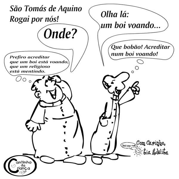 tomas_boi_voando